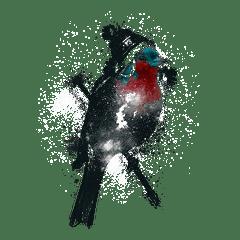 Weihnachten Vogel