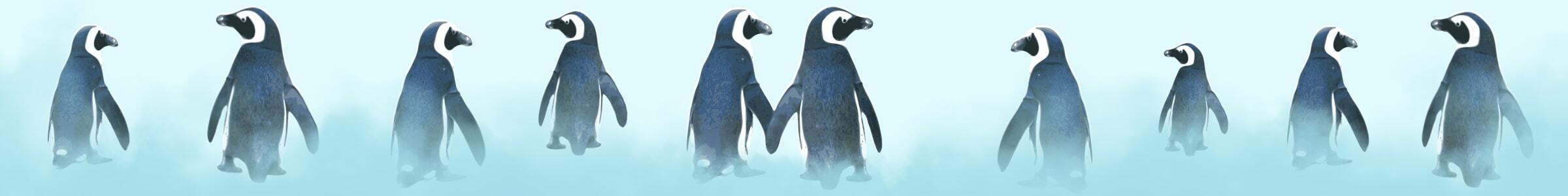 Category_Teaser_Header_Pinguin_2400x300