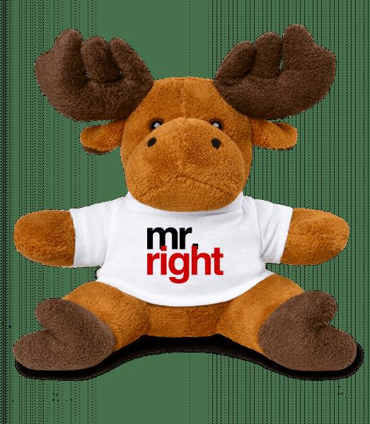 Mr. Right Logo - Elk - White - Vorn